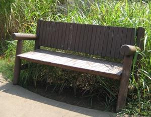 bench-300x231