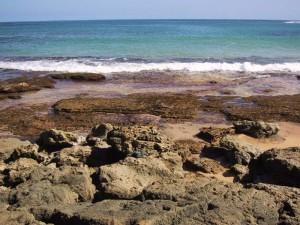 rocks-off-gilligans-island-300x225